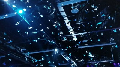 Confetti PLUS logos for launch at fan event - TLC Creative Technology